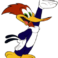 Profielfoto van Woodpecker